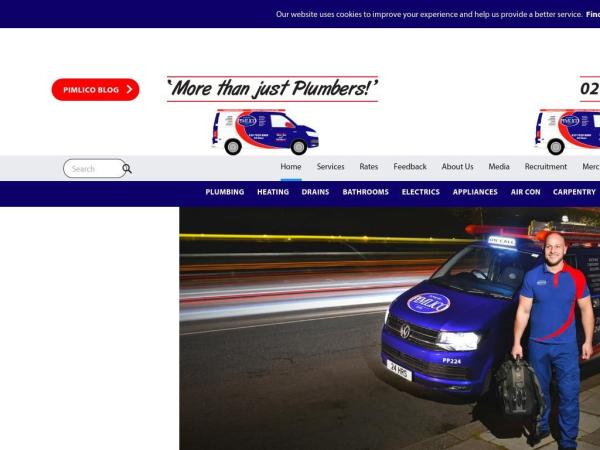 pimlicoplumbers.com