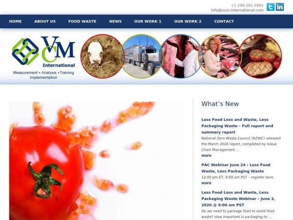vcm-international.com